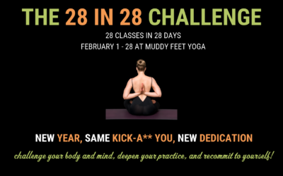 The 28 in 28 Challenge